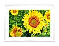 白い木枠フレーム ホーム装飾ポスター 額入り絵画(ひまわりの夏の黄色い花)40x30cm