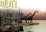 琥珀 (飯田孝一 宝石のほんシリーズvol.1) 画像