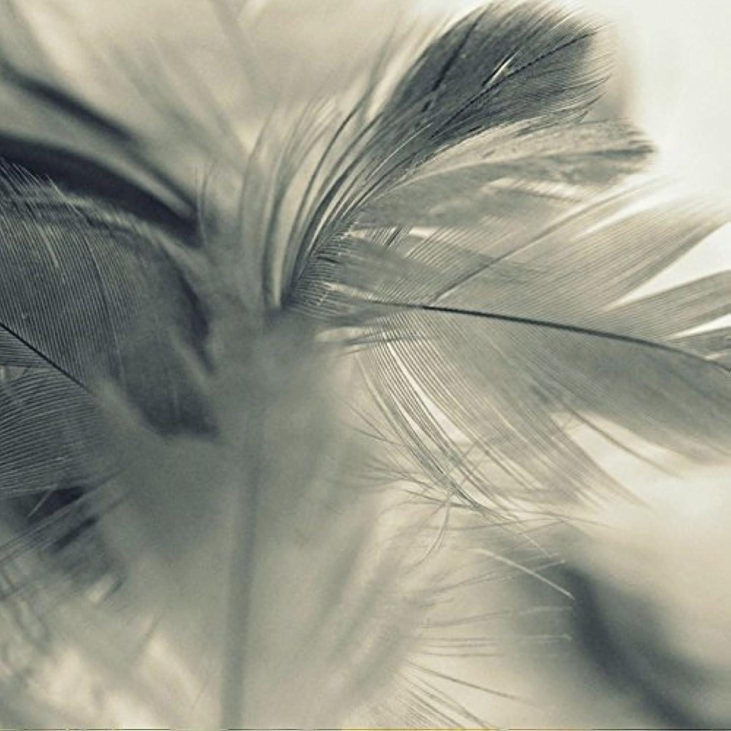 不信空の鋸歯状アロマフレグランスオイル エンジェルウィングス(Angel Wings)