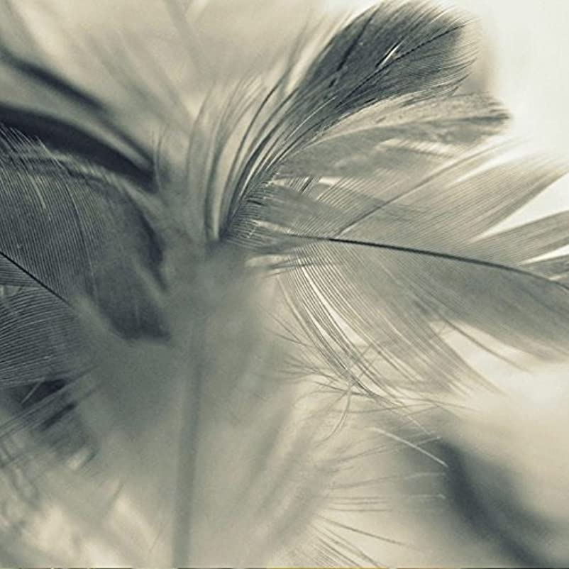 雹雑品のぞき穴アロマフレグランスオイル エンジェルウィングス(Angel Wings)