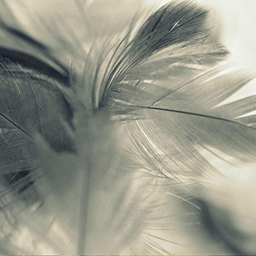 垂直リビングルームロンドンアロマフレグランスオイル エンジェルウィングス(Angel Wings)