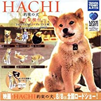 カプセル HACHI 約束の犬 ~約束根付~ シークレット1種(ハチ成犬ゴールドVer.)入り全7種セット