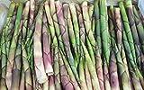 【国産 天然】雪国の竹の子 根曲がり竹 2kg 採りたてを産直。天ぷら、炊き込みご飯、味噌汁に最適