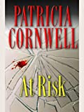 At Risk (Win Garano Book 1) (English Edition) 画像