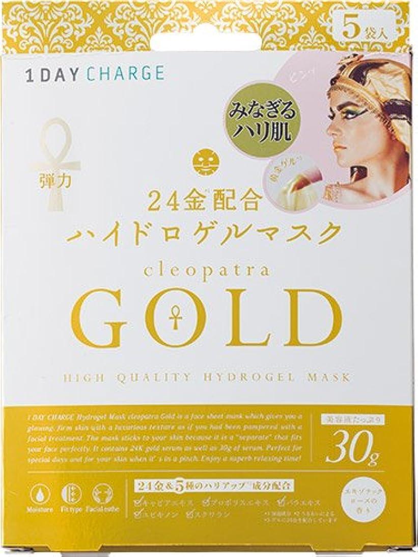 雰囲気信号頻繁にワンデーチャージ ハイドロゲルマスク クレオパトラゴールド 30g×5袋