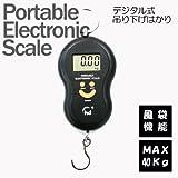 デジタル式吊り下げはかり(デジタルスケール・計量器・吊りはかり)MAX40Kg