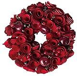 大橋新治商店 クリスマスリース Natural Wreath リース 20cm レッド 28-034