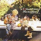 最後の雨 / Acid Black Cherry