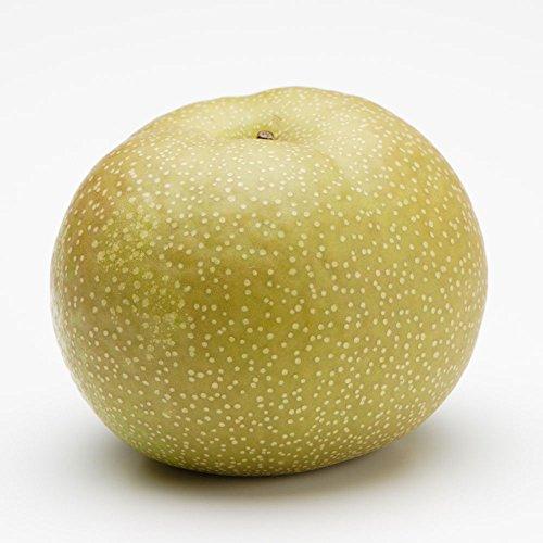 長野 産地直送 訳あり 味極み 葉とらず 梨 南水 減農薬 5k