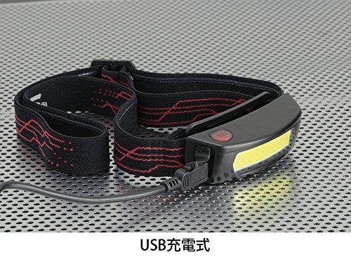 GENTOS(ジェントス) ヘッドライト NRシリーズ 【明るさ120ルーメン/実用点灯2.5時間】 NR-004R