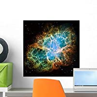 Crab Nebula Wall Mural by Wallmonkeys Peel and Stick Graphic (18 in H x 18 in W) WM277821 [並行輸入品]