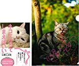 【Amazon.co.jp限定】ネコになってしまえばいい(心屋仁之助サイン入りクリアファイル付き)