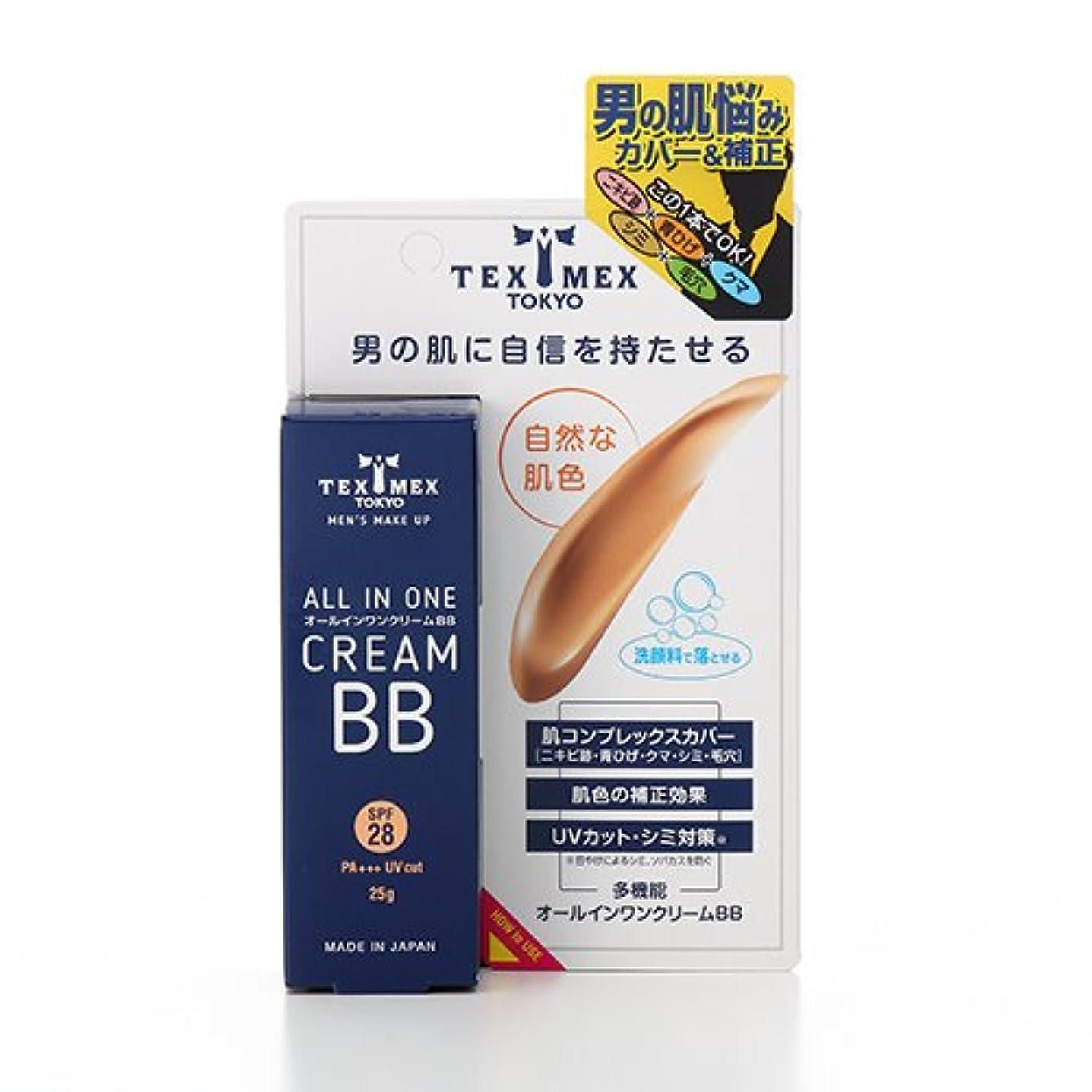 生じる接続割合テックスメックス オールインワンクリームBB 25g (ファンデーション) 【日焼け止め、ニキビ跡、青ひげカバー】