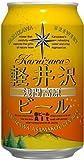 THE軽井沢ビール アルト(赤ビール) 缶 350ml×24本