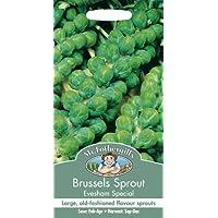 【輸入種子】 Mr.Fothergill's Seeds Brussels Sprout Evesham Special ブリュッセルズ・スプラウト(芽キャベツ)・イブシャム・スペシャル