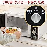 アイリスオーヤマ 電子レンジ 単機能レンジ 50Hz専用 東日本 ターンテーブル IMB-T171-5