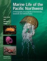 Marine Life of the Pacific Northwest: A Photographic Encyclopedia of Invertebrates, Seaweeds And Selected Fishes by Andy Lamb Bernard Hanby(2005-10-01)