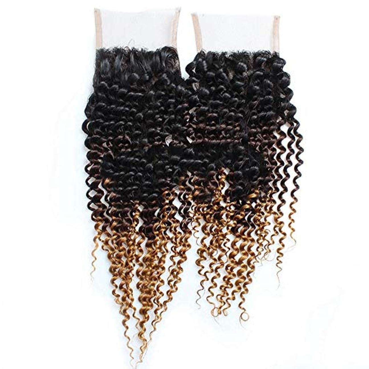 傀儡ペネロペ肌寒いHOHYLLYA 4×4レース前頭閉鎖黒からブロンドの3トーンカラー9A人間の髪の毛自然に見える合成髪レースかつらロールプレイングかつら長くて短い女性自然 (色 : ブラウン, サイズ : 12 inch)