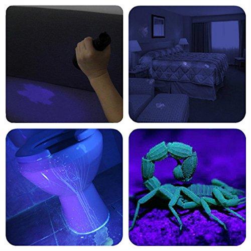 Vansky紫外線 ブラックライト UVライト目には見えない汚れに対策に (ブラック) Vansky