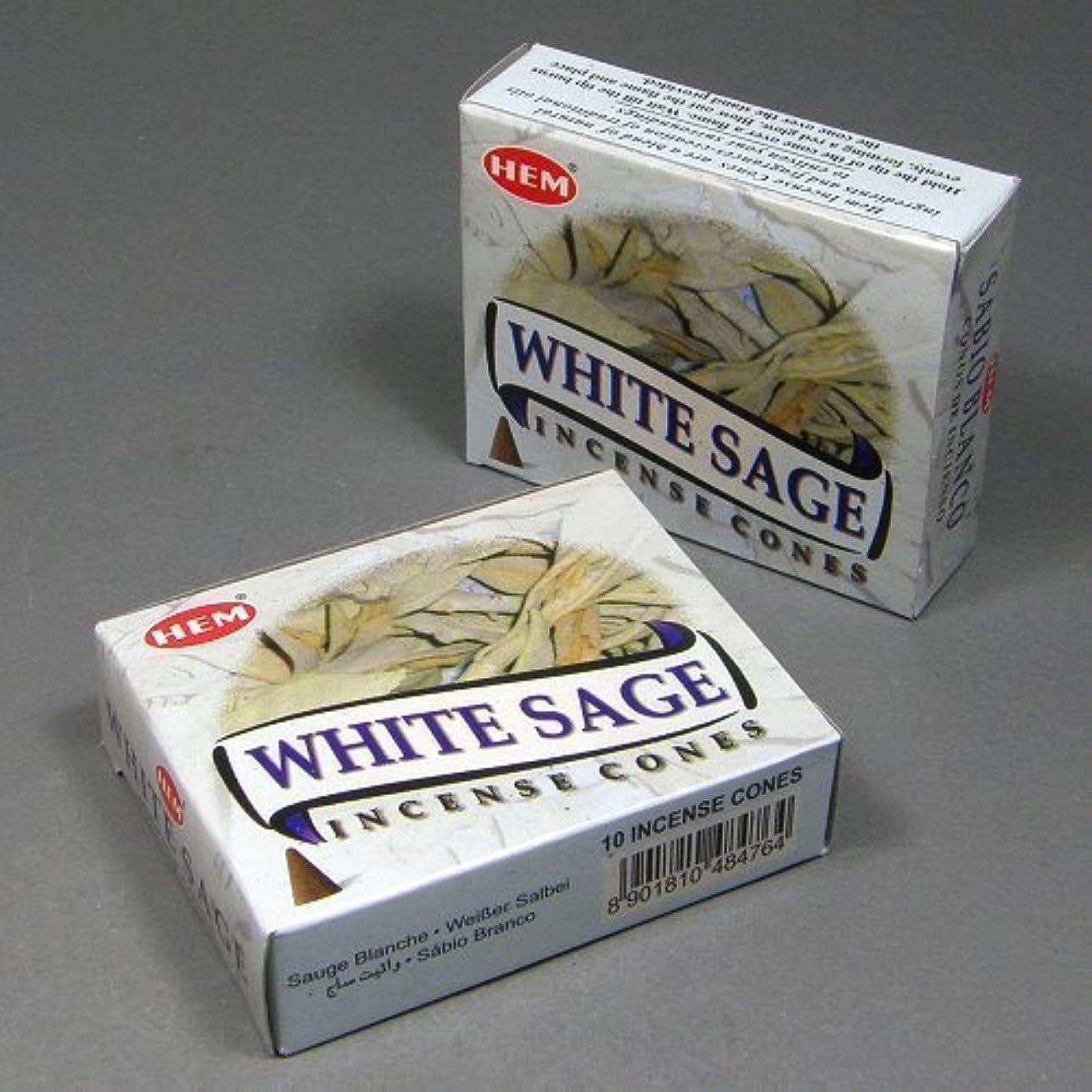 組み合わせ悪因子怖がらせるHemホワイトセージ香Dhoop Cones、10円錐のペアボックス