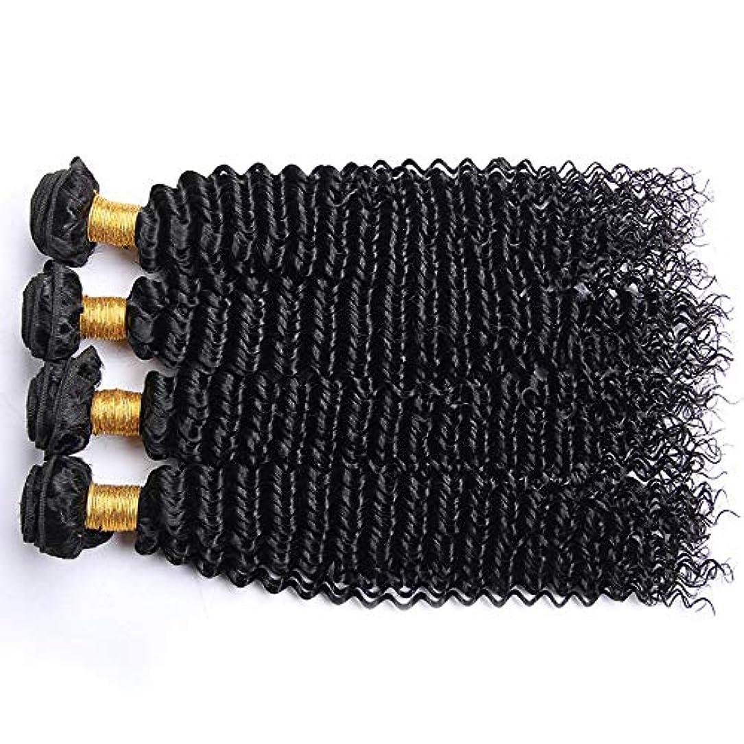 糸サーバ迷路HOHYLLYA アフロ変態カーリー人間の髪1バンドルブラジル100%未処理の人間の髪織り横糸ナチュラルカラーロングカーリーウィッグ (色 : 黒, サイズ : 28 inch)