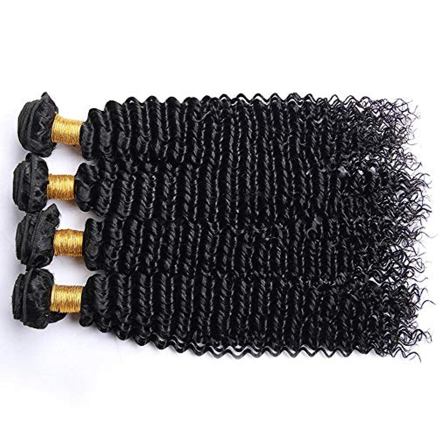 駅予想する返還HOHYLLYA アフロ変態カーリー人間の髪1バンドルブラジル100%未処理の人間の髪織り横糸ナチュラルカラーロングカーリーウィッグ (色 : 黒, サイズ : 28 inch)