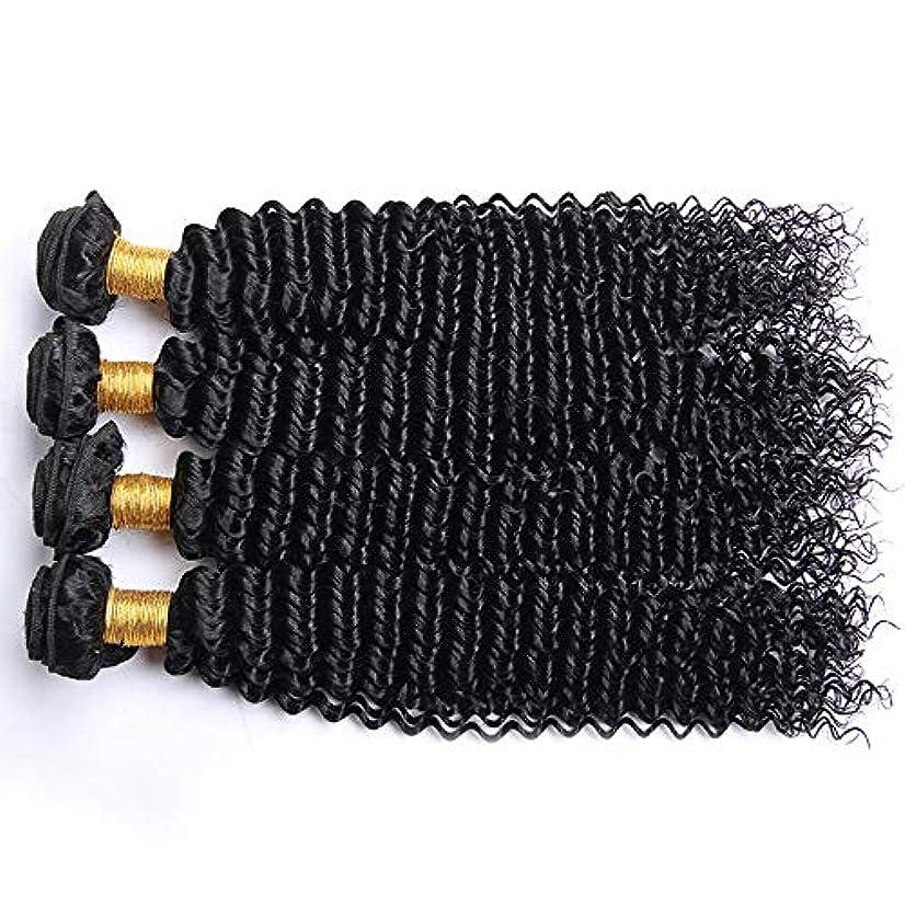 時折ミット称賛HOHYLLYA アフロ変態カーリー人間の髪1バンドルブラジル100%未処理の人間の髪織り横糸ナチュラルカラーロングカーリーウィッグ (色 : 黒, サイズ : 28 inch)