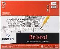 Canson Foundation Series Foundation Series Vellum Bristol, 14 x 17 Inches (C702-4607) [並行輸入品]