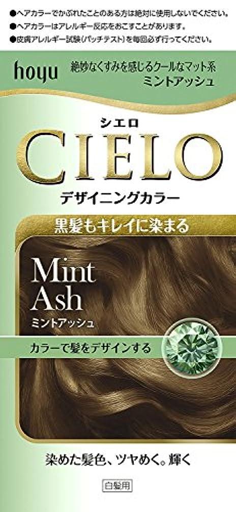 負頬骨宿題ホーユー シエロ デザイニングカラー (ミントアッシュ)×6個