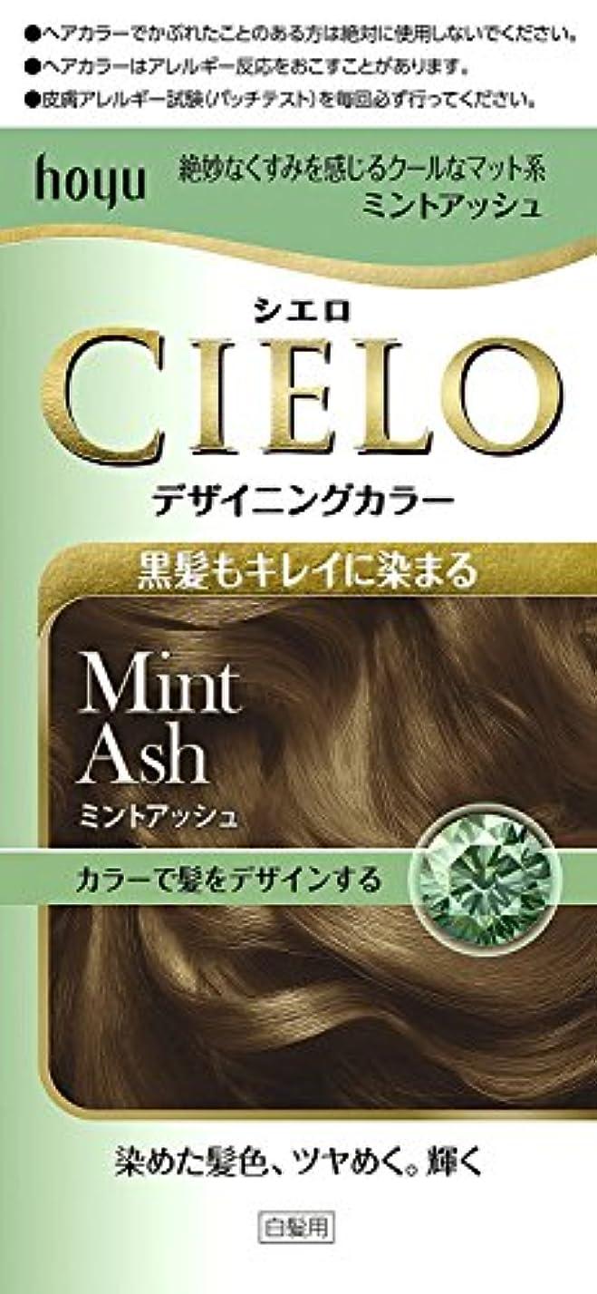 石膏虐殺かすかなホーユー シエロ デザイニングカラー (ミントアッシュ)×6個