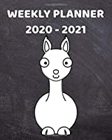 2020-2021 Weekly Planner: 2 Year Weekly & Monthly View Organizer & Agenda with To-Do's | For Llama Lovers