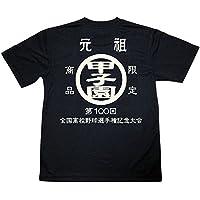 100回記念 全国高校野球選手権記念大会 元祖甲子園 Tシャツ ドライメッシュ 日本製 本気の夏、100回目 大変貴重です。 (L)