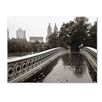 Trademark Fine Art Bow Bridge 2010 Canvas Wall Art by Chris Bliss 14 by 19-Inch ALI0297-C1419GG