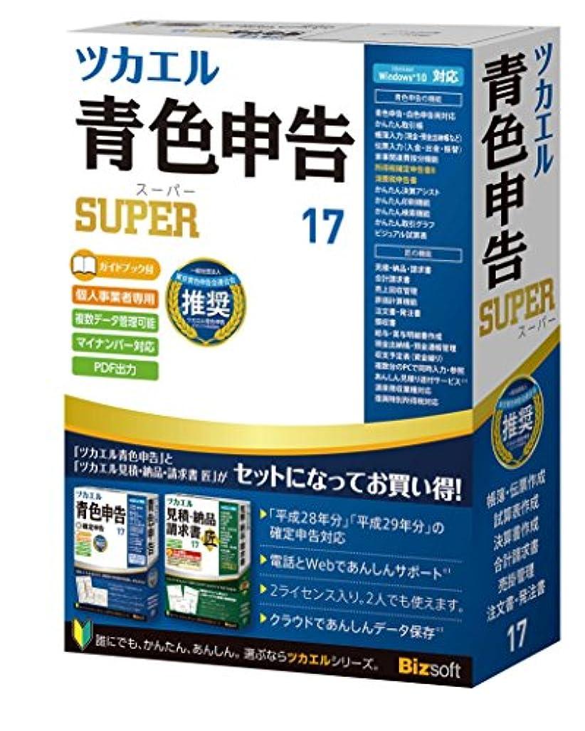 リマーク野心的抵抗ビズソフト ツカエル青色申告SUPER 17