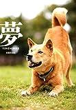 夢 -YUMENOSUKE-