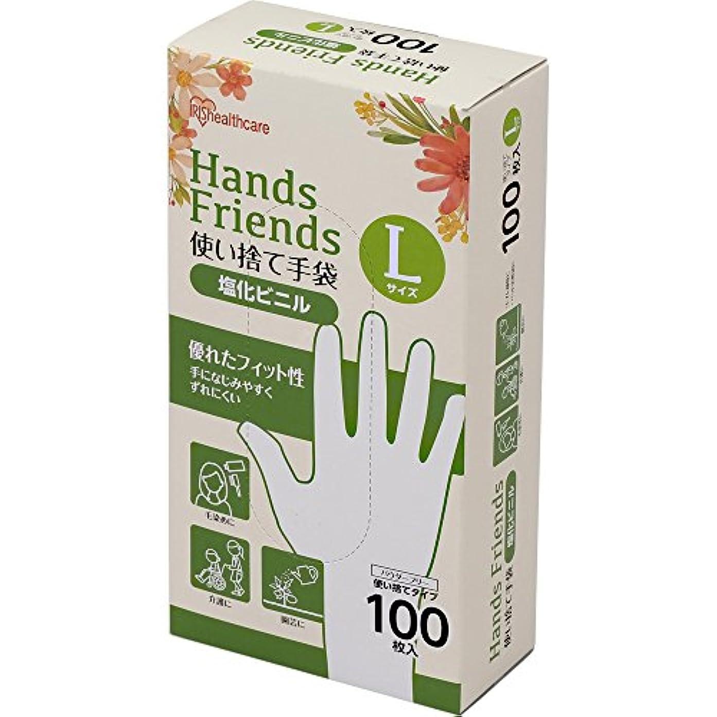 コーンウォール理論的苦しむ使い捨て手袋 クリア 塩化ビニル 100枚 Lサイズ PVC-100L
