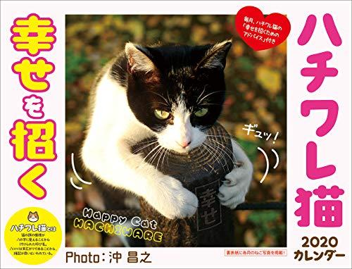 2020 幸せを招く ハチワレ猫カレンダー ([カレンダー])