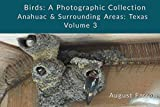Birds: A Photographic Collection: Anahuac & Surrounding Areas: Texas - Volume 3 (Birds of Anahuac) (English Edition)