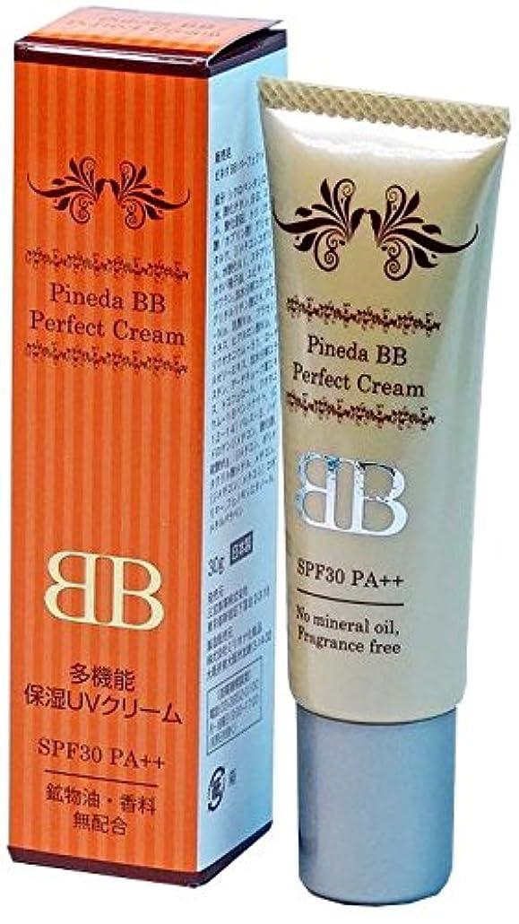 木製ペフ追加する三宝製薬 ピネダBB パーフェクトクリーム 30g (1本)