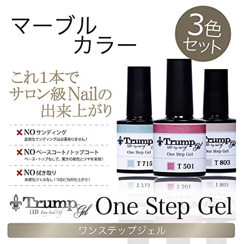 たらい大気つかまえる【日本製】Trump gel トランプジェル ワンステップジェル ジェルネイル カラージェル 3点 セット スモーキーモーヴ ボルドー マーブル (マーブルカラーセット)