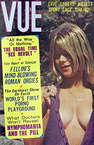 VUE (English Edition)