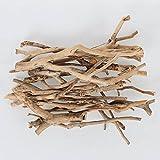 [ダルトン] Wild decoration driftwood style 流木 オブジェ 素材 A755-855B Natural