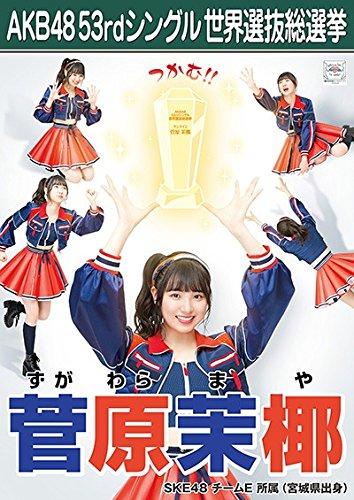 【菅原茉椰】 公式生写真 AKB48 Teacher Teacher 劇場盤特典