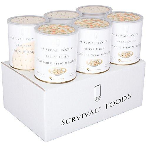 サバイバルフーズ 大缶 ファミリーセット 野菜シチュー
