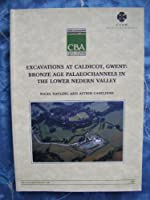 Excavations at Caldicot, Gwent (Research Report)