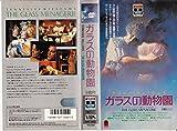 コロンビア ガラスの動物園 [VHS]