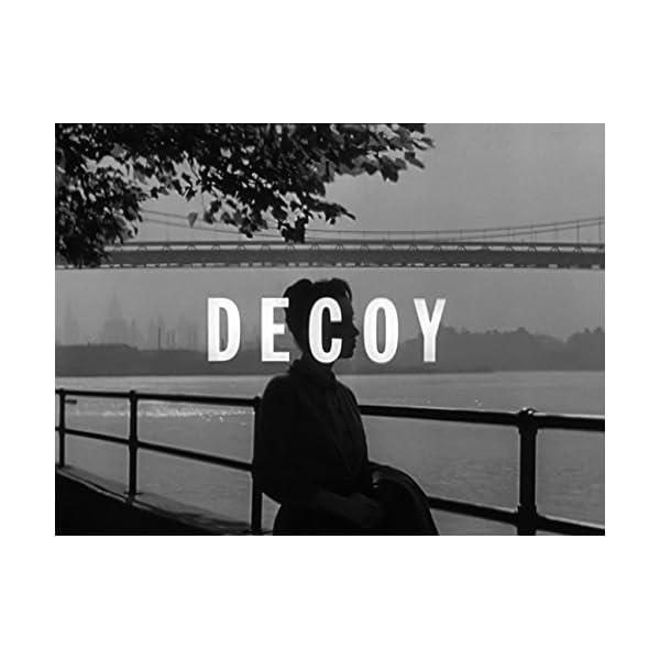 Decoy: Complete 39 Epis...の紹介画像2