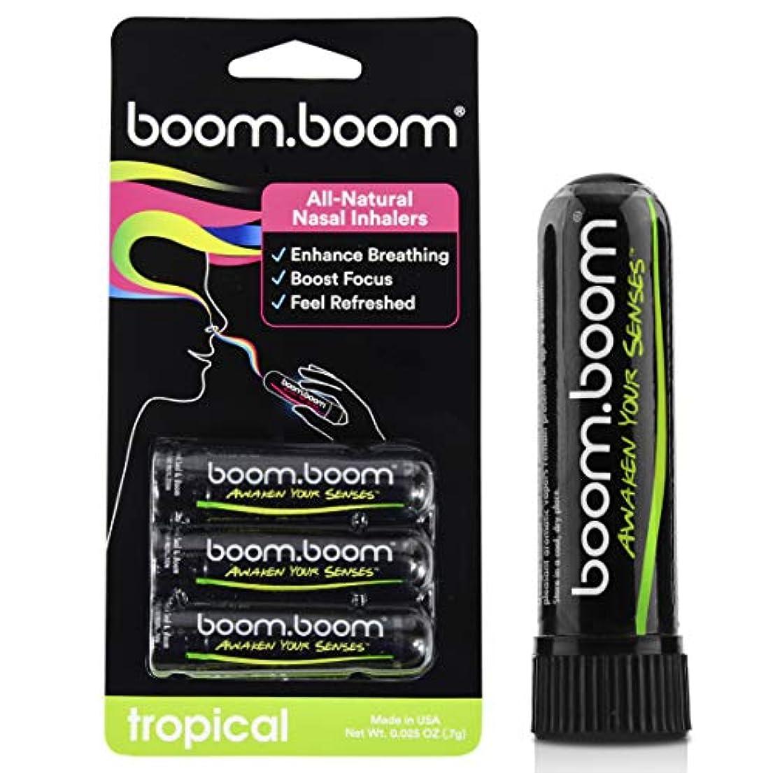 部矢晩ごはんアロマテラピー鼻吸入器(3パック)by BoomBoom | すべての自然植物療法エッセンシャルオイル気化器| Stuffy Noseからのインスタントリリーフ| 素晴らしいフレーバーメントール、ペパーミント、ユーカリ(バラエティーパック) (オレンジ+パッションフルーツ+マンゴ+レモン)