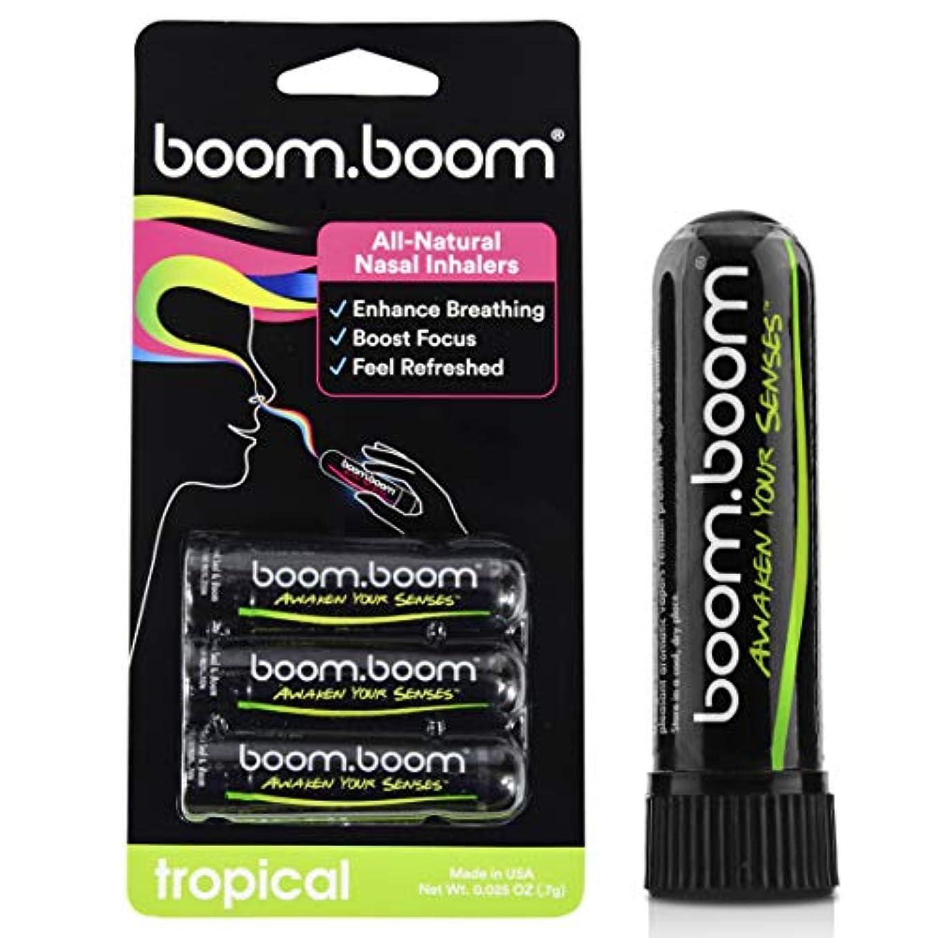雄大な私たちのものパットアロマテラピー鼻吸入器(3パック)by BoomBoom | すべての自然植物療法エッセンシャルオイル気化器| Stuffy Noseからのインスタントリリーフ| 素晴らしいフレーバーメントール、ペパーミント、ユーカリ(...