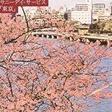 東京 画像